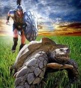 aquiles-tortuga